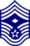 Chief Master Sergeant, First Sergeant - E9